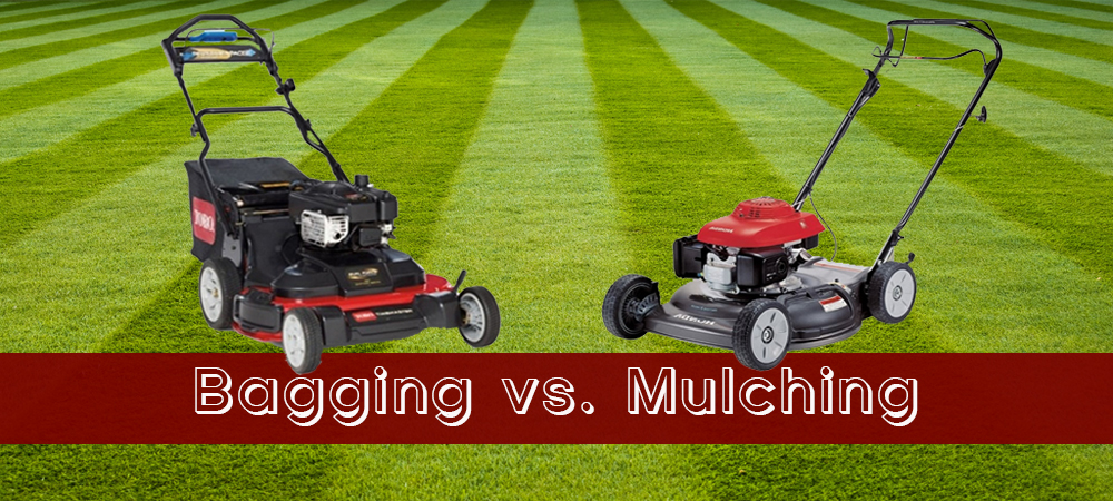 To Mulch or Not to Mulch…